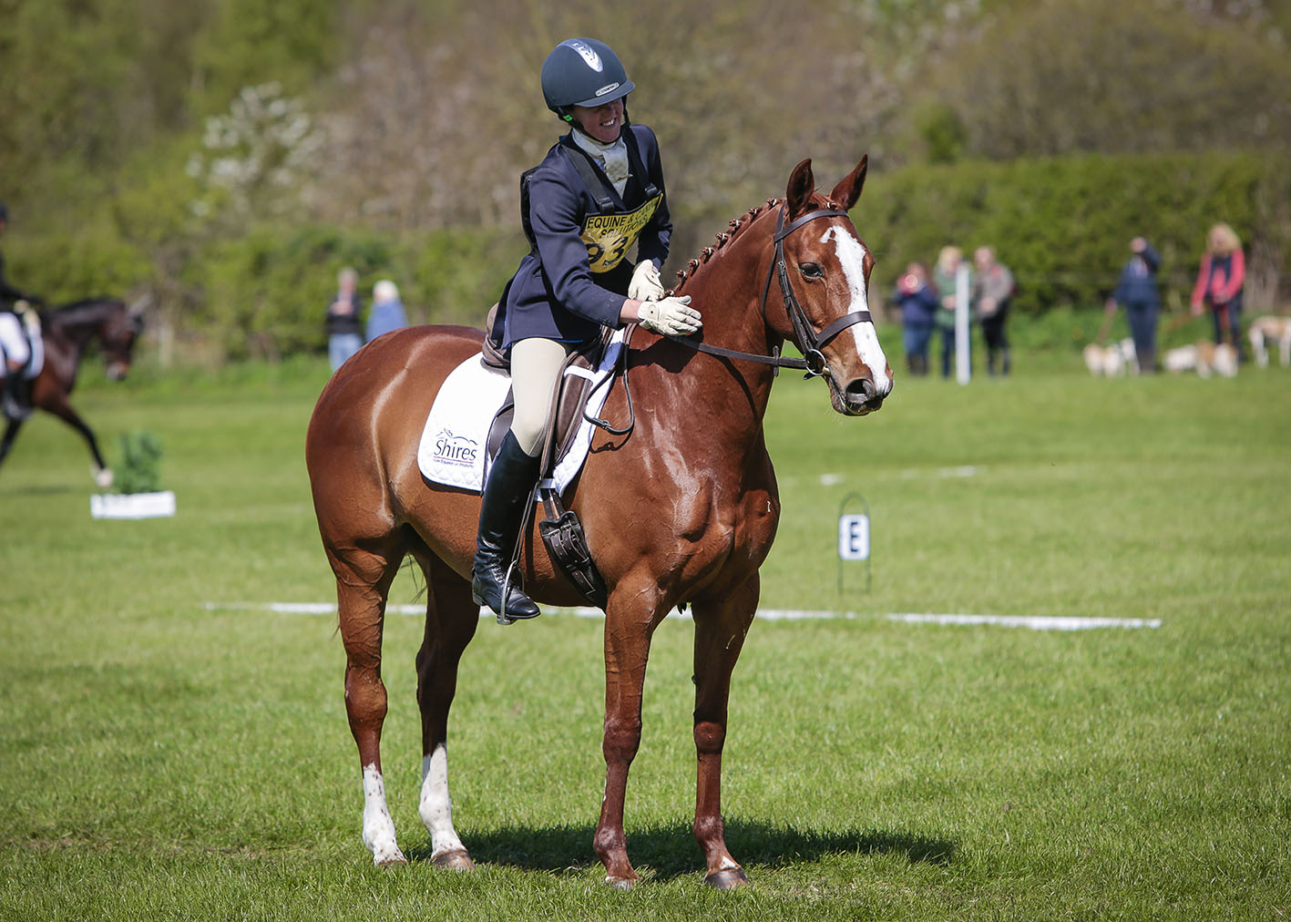Keeping Horses Calm | Equerry Horsefeed