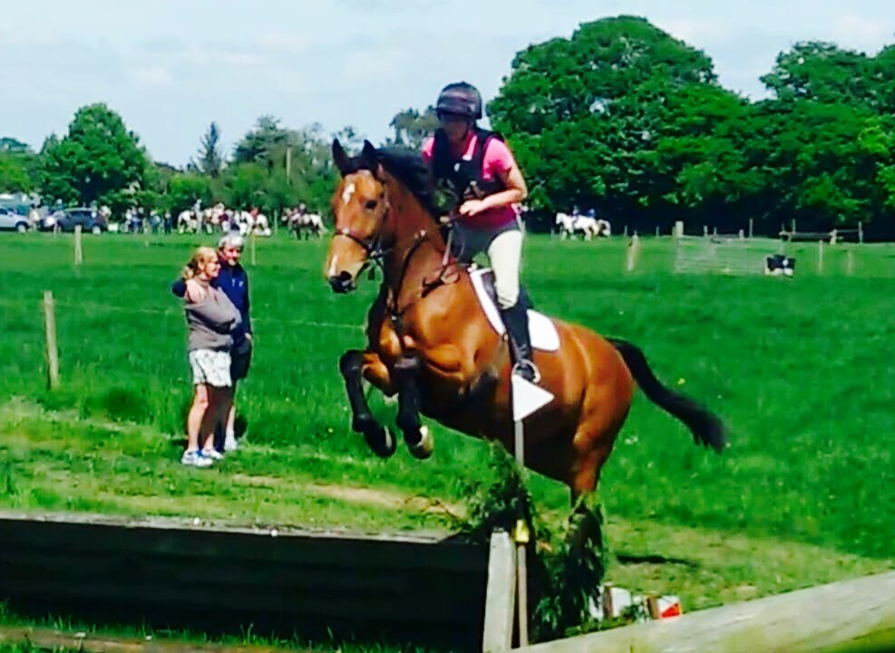 Equerry Horsefeed | Just another WordPress site | Page 6
