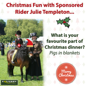 Christmas fun with Julie Templeton